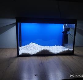 Аквариум новый Akvarium yangi