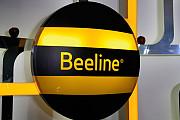 Золотой номер Beeline