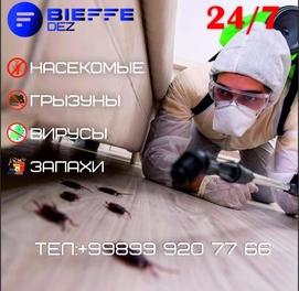 Дезинфекция от Bieffe-DEZ