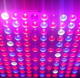 Фито светильник для растений