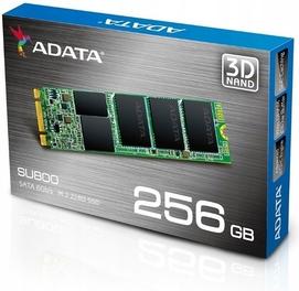 Новый Боксовый(США) Твердотельный M.2 SSD накопитель ADATA SU800 256GB