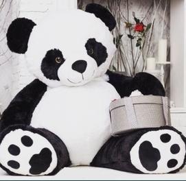 Panda Teddi va Boshqa Barcha Yumshoq O'yinchoqlar