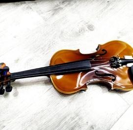 Скрипка Виктор Брендовые