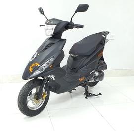 Скутера BIKELAND RS-Z - Надёжность, Мощность и Экономичность