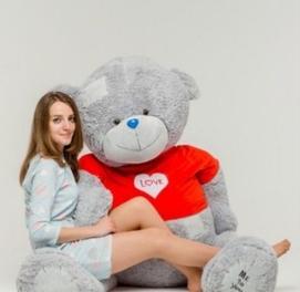 Teddi Teddy Teddiy 100% Orginal