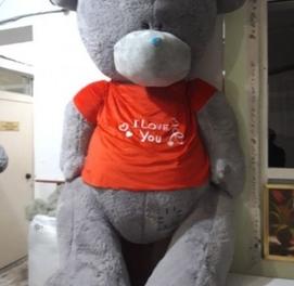 Teddy Teddi 1+1 Aksiya
