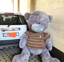 Teddy + Teddi Bonusga Qo'shib beramiz